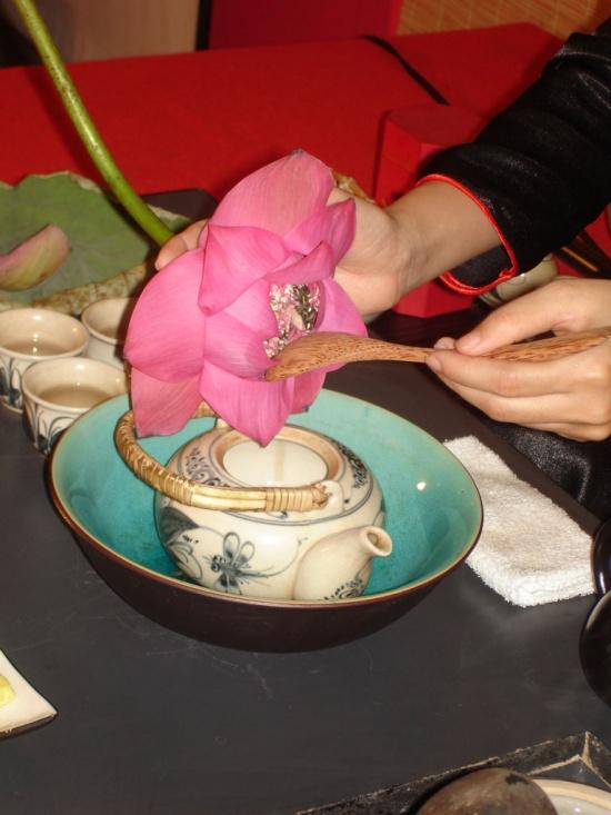 những lợi ích từ việc uống trà